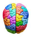 Brain Terrain and Bracelet Brain